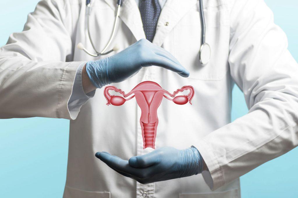 השתלת רחם - פרופ'.מ. עינת שלום פז, רופאת פוריות, אבחון וייעוץ להפרעות פוריות, טיפולי פריון וטיפולי IVF
